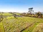 Thumbnail for sale in Courtlands Lane, Exmouth