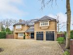 Thumbnail to rent in Blackdown Avenue, Pyrford, Woking