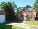 Thumbnail for sale in Beckside, Romanby, Northallerton