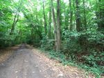 Thumbnail for sale in Coombes Lane, Wokingham