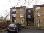 Thumbnail to rent in Wellington Drive, Welwyn Garden City