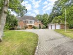 Thumbnail to rent in Wentworth, Virginia Water, Surrey
