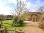 Thumbnail for sale in Rowes Lane, East Boldre, Brockenhurst, Hampshire
