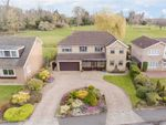 Thumbnail for sale in Grangeside, Darlington, County Durham