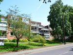 Thumbnail for sale in 50 Braidley Road, Meyrick Park, Bournemouth