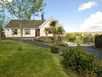 Thumbnail for sale in Magheralone Road, Ballynahinch