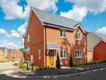 Thumbnail to rent in Wrecclesham, Farnham, Surrey