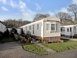 Thumbnail to rent in Bluebell Woods Park, Broad Oak, Canterbury, Kent
