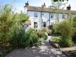 Thumbnail to rent in The Cedars, Syerston, Newark