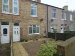 Thumbnail to rent in Swarland Terrace, Red Row, Morpeth