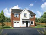 "Thumbnail to rent in ""Heddon"" at Church Road, Warton, Preston"