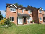 Thumbnail to rent in Oakwood Close, Midhurst