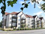 Thumbnail to rent in Alexander Grove, Flat 3/2, Bearsden, East Dunbartonshire