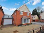 Thumbnail to rent in Chantry Close, Braintree