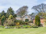 Thumbnail for sale in Cold Harbour Lane, Brackenfield, Near Alfreton