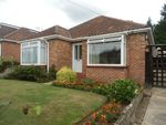 Thumbnail to rent in Broom Avenue, Thorpe St Andrew, Norwich