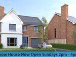 Thumbnail to rent in Hanover Hill Gardens, Hanover Hill, Bangor