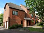 Thumbnail to rent in Hornbeam Drive, East Oxford