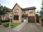 Thumbnail to rent in Hartland Avenue, Tattenhoe, Milton Keynes