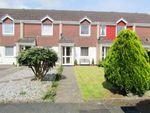 Thumbnail to rent in Newcross Park, Kingsteignton, Newton Abbot