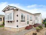 Thumbnail to rent in Thornlea Court, Wick, Littlehampton