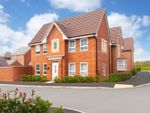 "Thumbnail to rent in ""Morpeth"" at Park Hall Road, Mansfield Woodhouse, Mansfield"