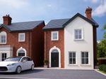 Thumbnail to rent in Ballycullen Halt, Scrabo Road, Newtownards