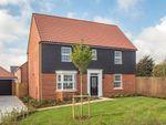 "Thumbnail to rent in ""Layton"" at Maldon Road, Burnham-On-Crouch"