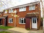 Thumbnail to rent in Woodrush Crescent, Locks Heath, Southampton