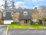 Thumbnail to rent in Highwoods, Caterham, Surrey