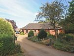 Thumbnail for sale in The Croft, Aston Tirrold, Didcot
