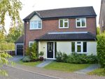 Thumbnail for sale in Lampern Close, Billericay
