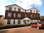 Thumbnail to rent in Cotehele Drive, Paignton