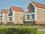 Thumbnail to rent in Linge Avenue, Off Centenary Way, Chelmsford, Essex