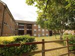 Thumbnail for sale in Hilly Fields, Welwyn Garden City