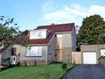 Thumbnail to rent in Deeside Gardens, Aberdeen