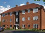 Thumbnail to rent in Blue Boar Lane, Off Wroxham Road, Norwich, Norfolk