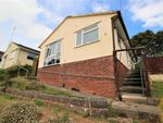 Thumbnail for sale in Ailescombe Road, Paignton