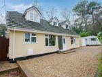 Thumbnail for sale in Beaufoys Avenue, Ferndown, Dorset
