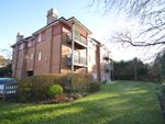 Thumbnail to rent in Belmore Lane, Lymington