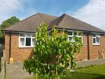Thumbnail to rent in Downs View, Canterbury Road, Chilham
