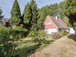 Thumbnail to rent in Windlesham, Surrey