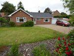 Thumbnail to rent in White Horse Lane, Briggate, North Walsham