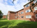 Thumbnail to rent in Burnside Court, Black Path, Polegate, East Sussex