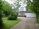Thumbnail to rent in Maiden Erlegh Drive, Earley, Reading