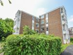 Thumbnail to rent in Willowfield, Harlow, Essex