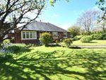 Thumbnail for sale in Harbour Lane, Warton, Preston