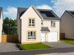 "Thumbnail to rent in ""Dunbar"" at Kirkintilloch, Glasgow"