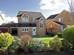 Thumbnail for sale in Blackbrook Drive, Ruabon, Wrexham