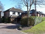 Thumbnail to rent in Russell Hill Road, Purley